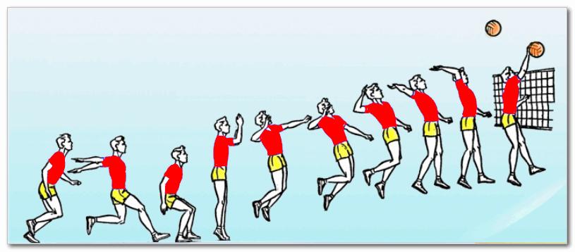 техника прыжка перед ударом